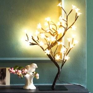 blossom-light