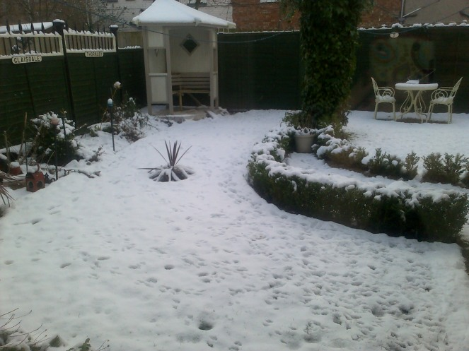 Snow 002