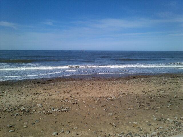 Beach Twitter